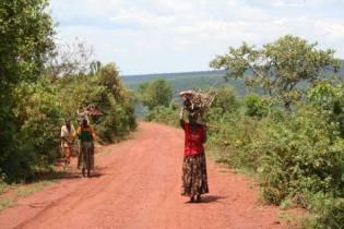 Racconti di viaggio uganda rwanda burundi 08 di erik for Piccole piantagioni